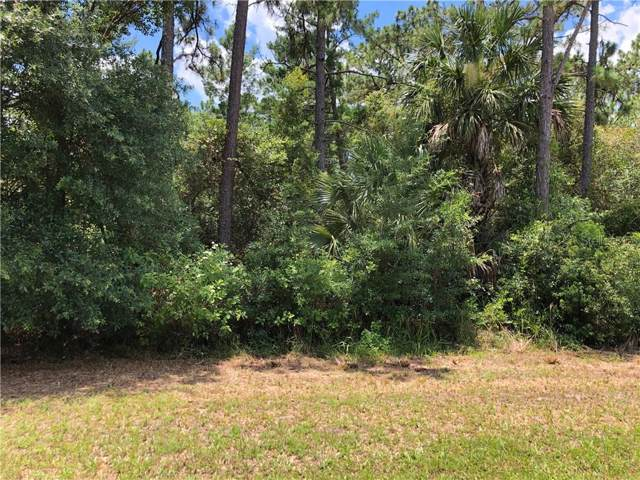 1361 Howland Boulevard, Deltona, FL 32738 (MLS #V4910376) :: Premium Properties Real Estate Services