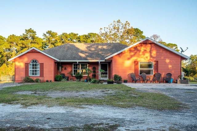 5625 Old Perkins Highway, De Leon Springs, FL 32130 (MLS #V4910803) :: The Duncan Duo Team