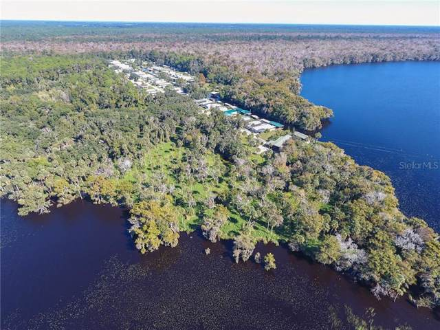 1675 Perch Lane, Seville, FL 32190 (MLS #V4910815) :: Zarghami Group
