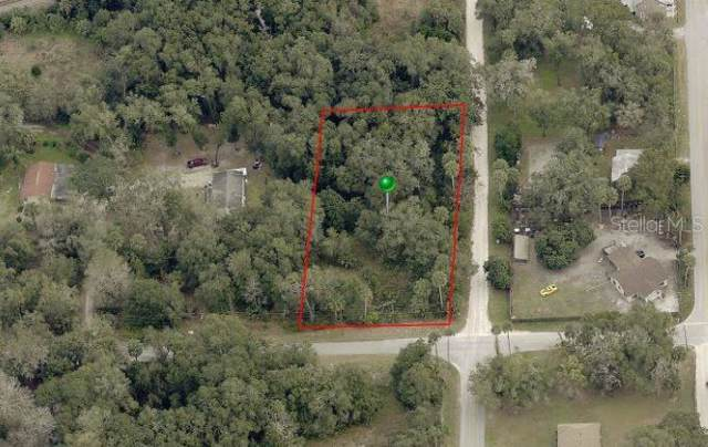 Kimble Street, Seville, FL 32190 (MLS #V4910846) :: The Duncan Duo Team
