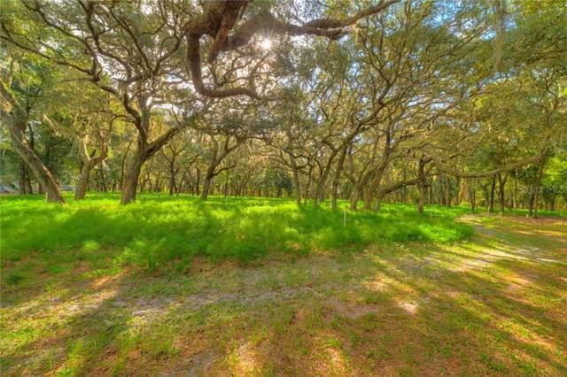 Shaw Lake Road, Pierson, FL 32180 (MLS #V4910899) :: Baird Realty Group