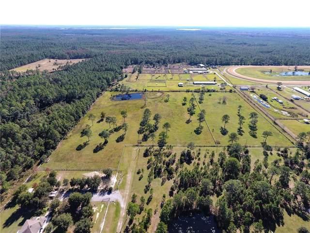 1995 Leah Star Road, Astor, FL 32102 (MLS #V4910939) :: Team Bohannon Keller Williams, Tampa Properties