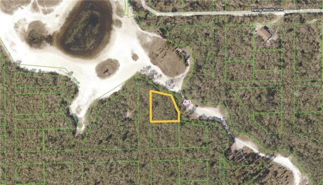 Address Not Published, Deltona, FL 32738 (MLS #V4910993) :: 54 Realty