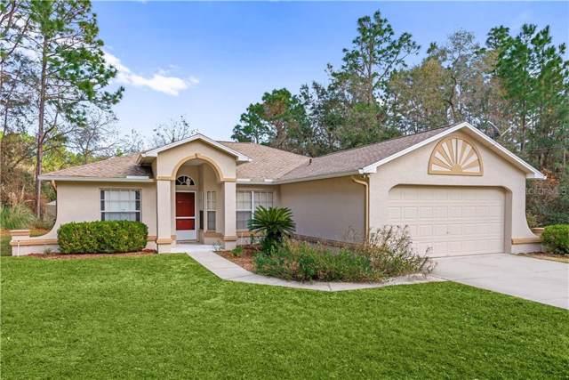 8049 N Creek Way, Citrus Springs, FL 34434 (MLS #V4911282) :: 54 Realty
