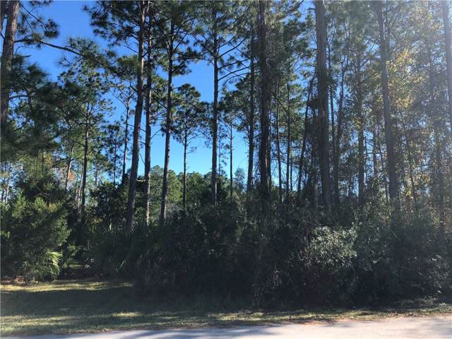 Address Not Published, Palm Coast, FL 32164 (MLS #V4911368) :: The Duncan Duo Team