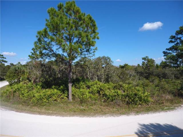 Chicken Farm Road, Osteen, FL 32764 (MLS #V4911562) :: Team Bohannon Keller Williams, Tampa Properties