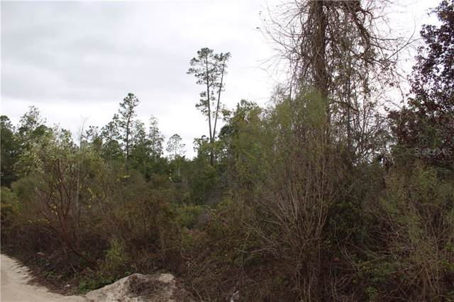 Cooter Pond Road, Deland, FL 32720 (MLS #V4911823) :: GO Realty