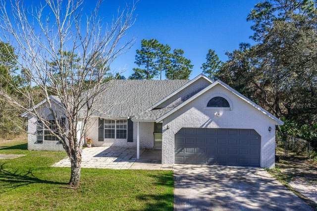 1067 9TH Avenue, Deland, FL 32724 (MLS #V4911985) :: GO Realty