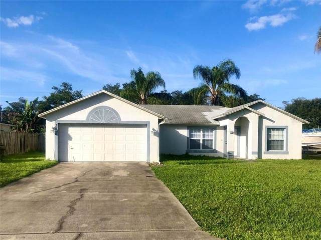 3416 Lime Tree Drive, Edgewater, FL 32141 (MLS #V4912103) :: Homepride Realty Services