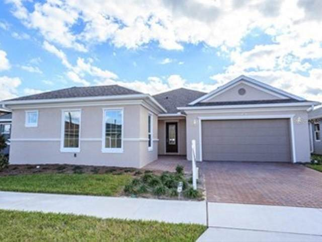 199 Silver Maple Road, Groveland, FL 34736 (MLS #V4912152) :: Burwell Real Estate