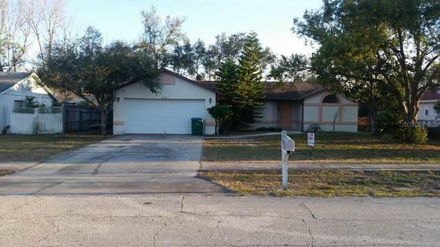 1081 Matterhorn Street, Deltona, FL 32725 (MLS #V4912318) :: Homepride Realty Services
