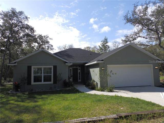 4515 Owls Nest Court, De Leon Springs, FL 32130 (MLS #V4912435) :: Team Bohannon Keller Williams, Tampa Properties