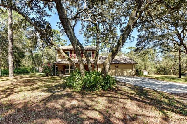 1327 Good Earth Drive, De Leon Springs, FL 32130 (MLS #V4912464) :: Team Bohannon Keller Williams, Tampa Properties