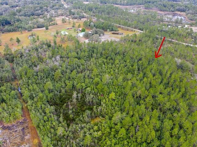 Still Road, Pierson, FL 32180 (MLS #V4912589) :: Baird Realty Group