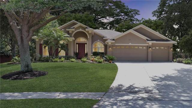 3443 Players Point Loop, Apopka, FL 32712 (MLS #V4912853) :: Bustamante Real Estate
