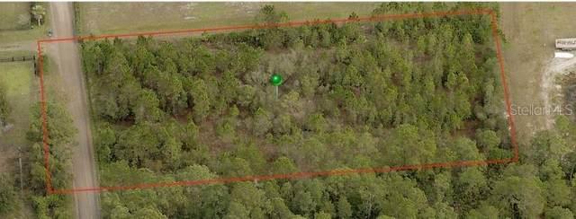 3976 Brantford Road, New Smyrna Beach, FL 32168 (MLS #V4912970) :: Florida Life Real Estate Group