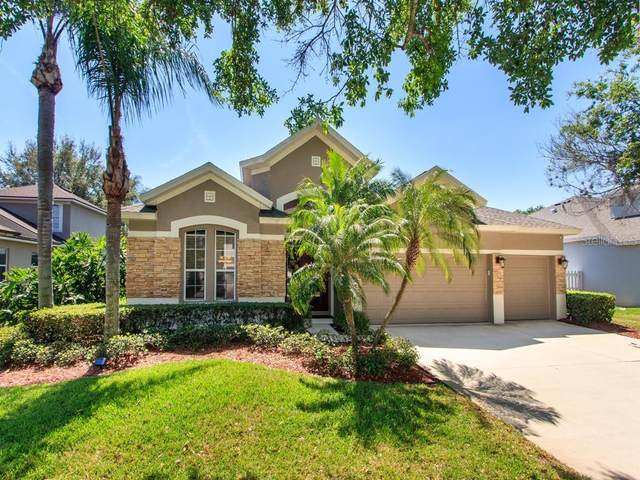 3953 Emerald Estates Circle, Apopka, FL 32703 (MLS #V4913022) :: Young Real Estate