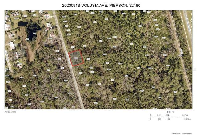 S Volusia Avenue, Pierson, FL 32180 (MLS #V4913031) :: Rabell Realty Group