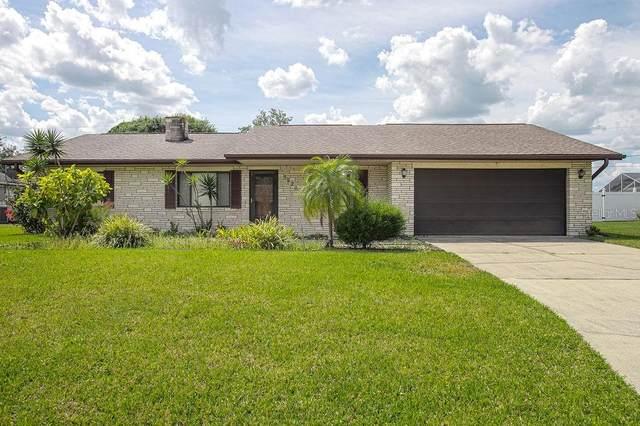 3220 Queen Palm Drive, Edgewater, FL 32141 (MLS #V4913035) :: BuySellLiveFlorida.com