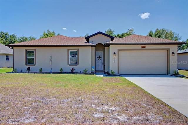 709 Armadillo Drive, Deltona, FL 32725 (MLS #V4913081) :: Your Florida House Team