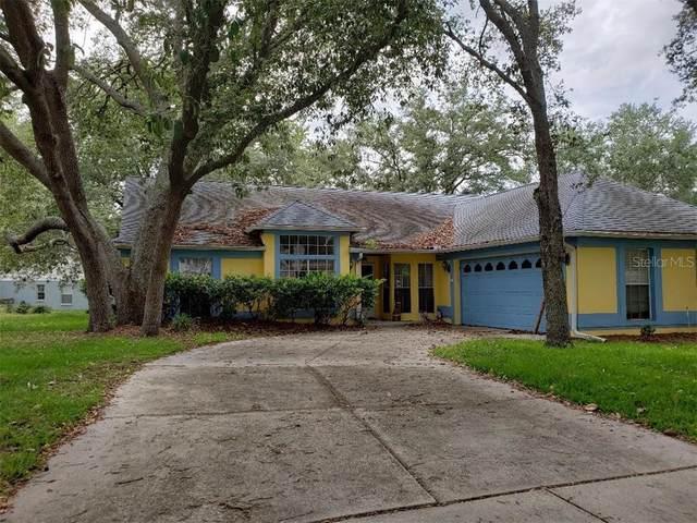 1788 Errol Woods Drive, Apopka, FL 32712 (MLS #V4913357) :: KELLER WILLIAMS ELITE PARTNERS IV REALTY
