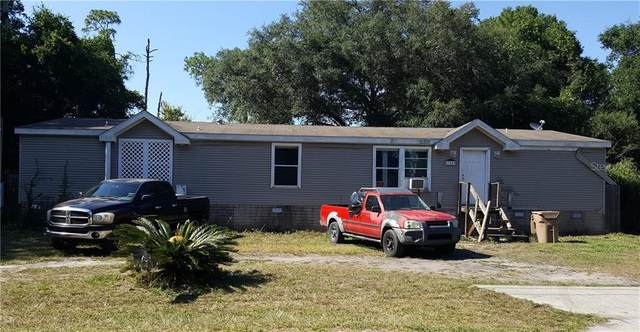 27849 Veva Ave, Paisley, FL 32767 (MLS #V4913513) :: Rabell Realty Group