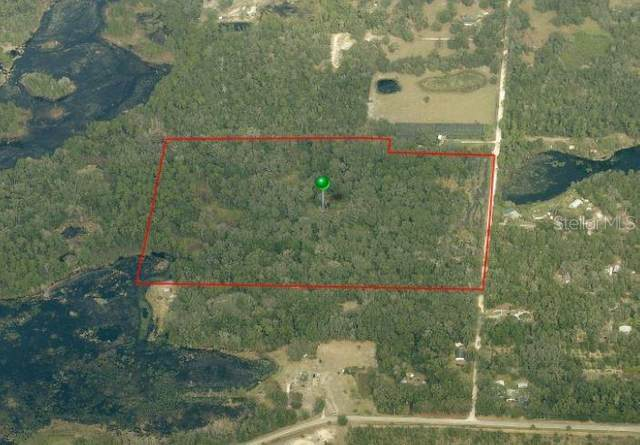 1572 Murphy Road, Pierson, FL 32180 (MLS #V4913635) :: Heckler Realty