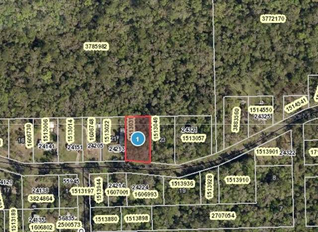 River Road, Astor, FL 32102 (MLS #V4913661) :: Florida Real Estate Sellers at Keller Williams Realty