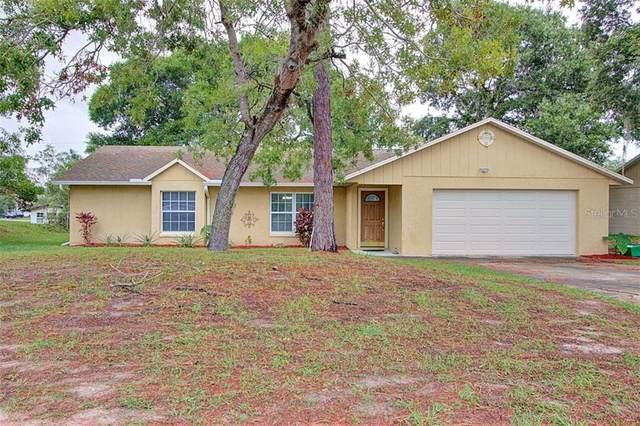 3185 Newmark Drive, Deltona, FL 32738 (MLS #V4913703) :: Griffin Group