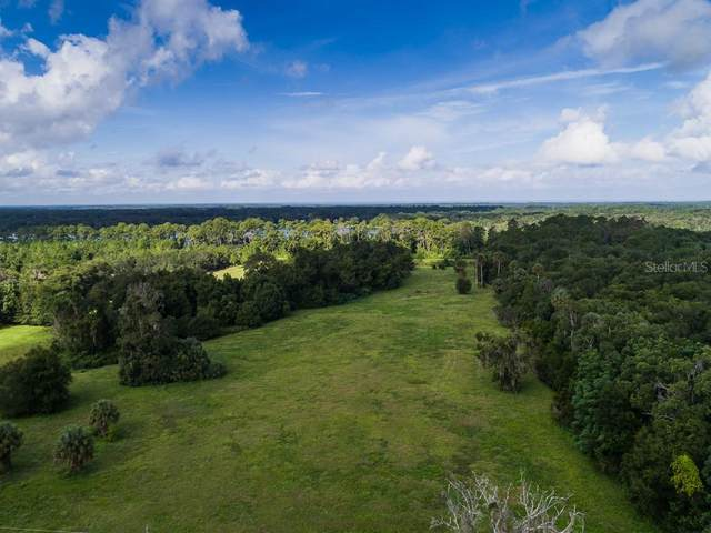 150 S Volusia Avenue, Pierson, FL 32180 (MLS #V4913753) :: GO Realty