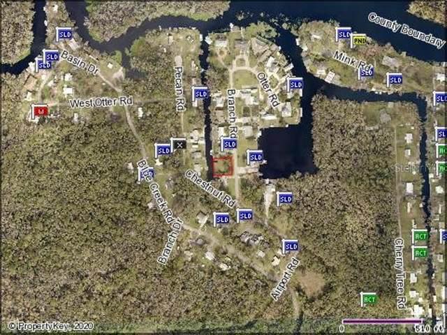 Branch Road, Astor, FL 32102 (MLS #V4913764) :: Team Bohannon Keller Williams, Tampa Properties