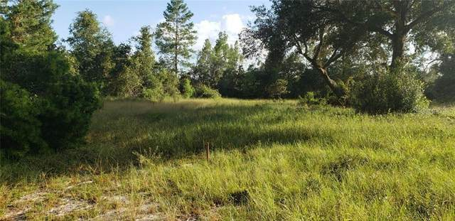 27444 County Road 42, Paisley, FL 32767 (MLS #V4913798) :: Cartwright Realty