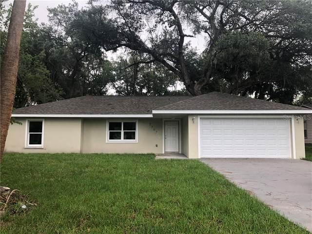 3307 Needle Palm Drive, Edgewater, FL 32141 (MLS #V4913897) :: Team Bohannon Keller Williams, Tampa Properties