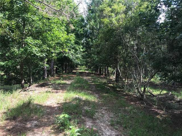 15539 County Road 305, Bunnell, FL 32110 (MLS #V4913997) :: Griffin Group
