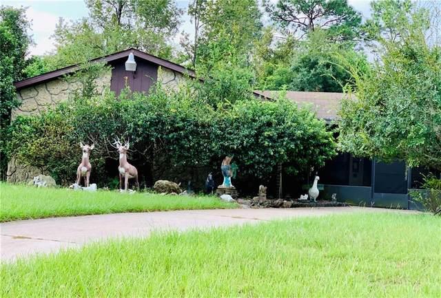 134 W Holly Drive, Orange City, FL 32763 (MLS #V4914170) :: The A Team of Charles Rutenberg Realty