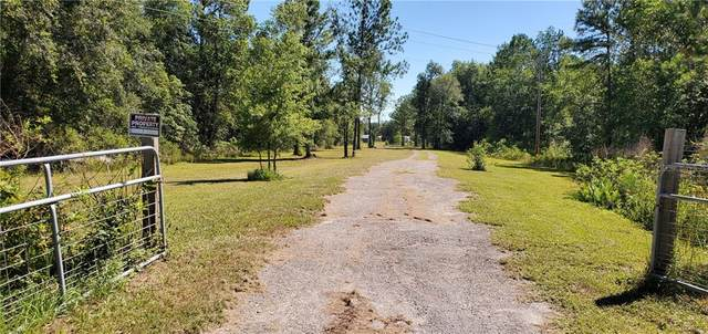 1485 S Us Highway 17, Pierson, FL 32180 (MLS #V4914199) :: GO Realty
