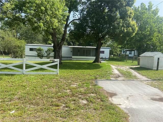 31521 Spruce Drive, Eustis, FL 32736 (MLS #V4914247) :: Bustamante Real Estate