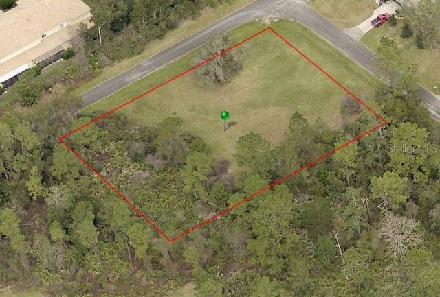 190 Scenic Magnolia Drive, Deland, FL 32724 (MLS #V4914249) :: Florida Life Real Estate Group