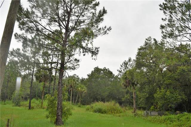 Osteen Maytown Road, Osteen, FL 32764 (MLS #V4914326) :: The Robertson Real Estate Group