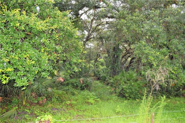 Osteen Maytown Road, Osteen, FL 32764 (MLS #V4914329) :: Lockhart & Walseth Team, Realtors