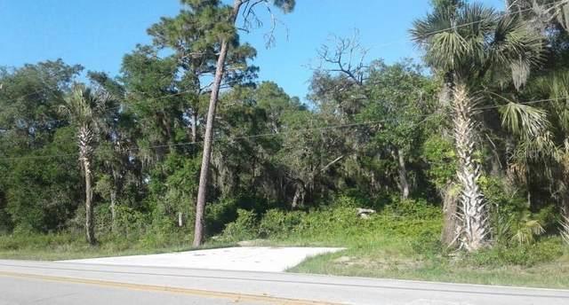 Address Not Published, De Leon Springs, FL 32130 (MLS #V4914407) :: Team Borham at Keller Williams Realty