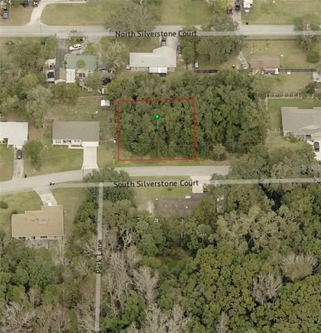 S Silverstone Court, Orange City, FL 32763 (MLS #V4914444) :: Bustamante Real Estate