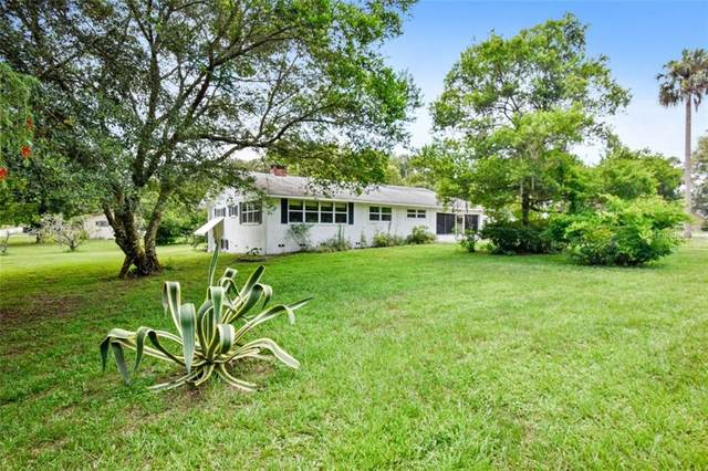 154 N Lakeview Drive, Lake Helen, FL 32744 (MLS #V4914562) :: Team Bohannon Keller Williams, Tampa Properties
