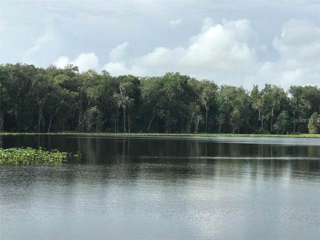 State Rd 11, De Leon Springs, FL 32130 (MLS #V4914646) :: Premium Properties Real Estate Services