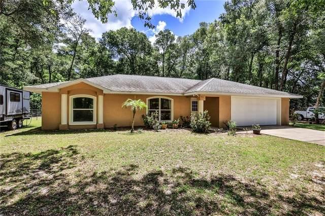 551 Mckenzie Road, Lake Helen, FL 32744 (MLS #V4914715) :: Team Bohannon Keller Williams, Tampa Properties