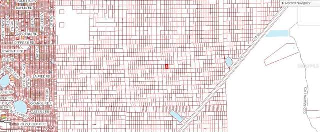 No Street No Street, Deland, FL 32720 (MLS #V4914749) :: Griffin Group