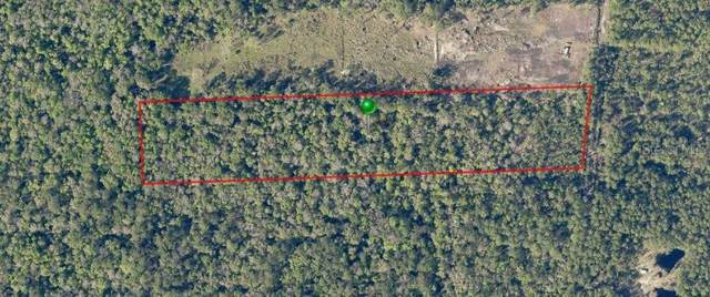 720 Old Bubbly Road, Pierson, FL 32180 (MLS #V4914884) :: The Duncan Duo Team