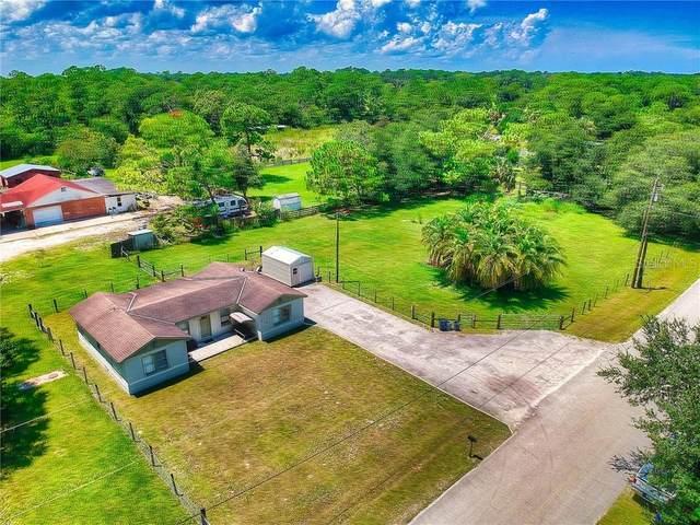664 Louella Street, New Smyrna Beach, FL 32168 (MLS #V4914928) :: Florida Life Real Estate Group