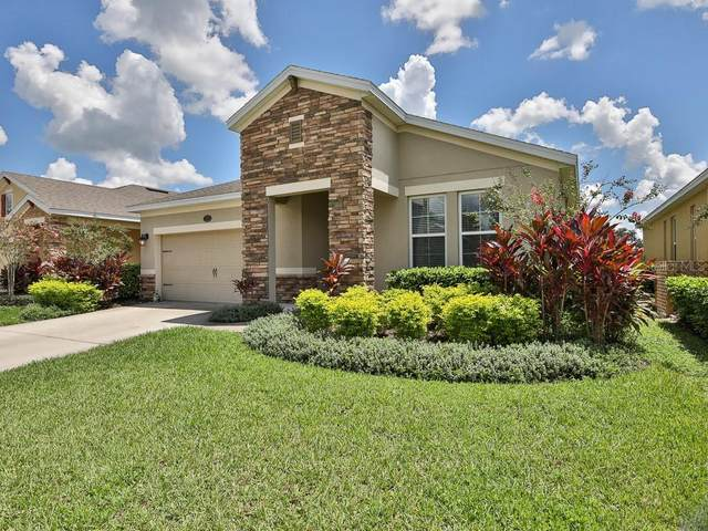 317 W Freesia Court, Deland, FL 32724 (MLS #V4914970) :: Burwell Real Estate