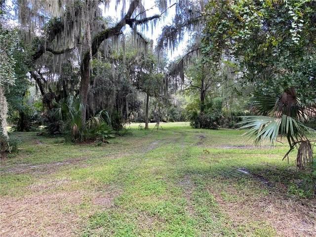 1690 Caroline Drive, Pierson, FL 32180 (MLS #V4915262) :: Team Buky